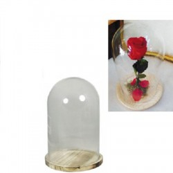 Cúpula cristal con base 22 cm