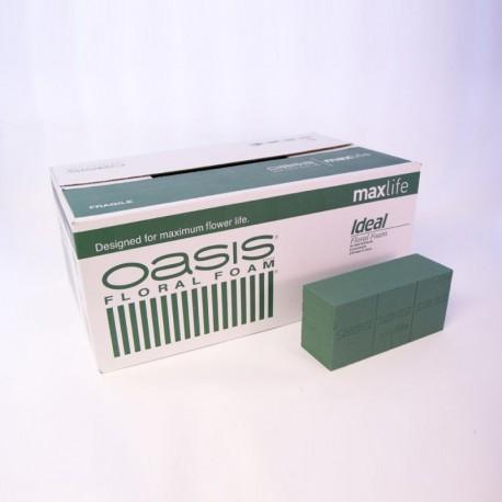 Oasis Ideal Maxlife Pastillas