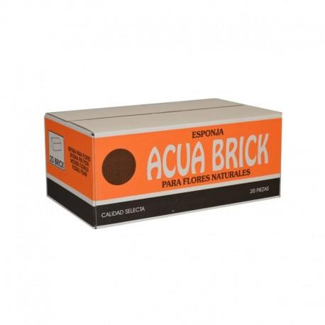 Acuabrick
