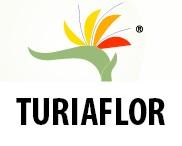 Turiaflor-Flors Montañana